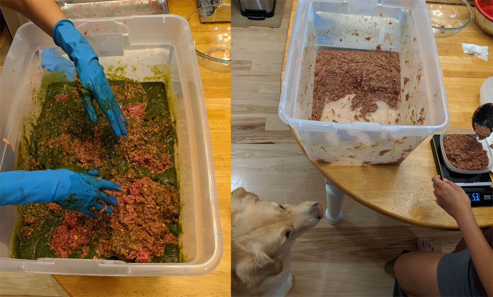 Mixing all the raw ingredients, and then portioning out the dog food.