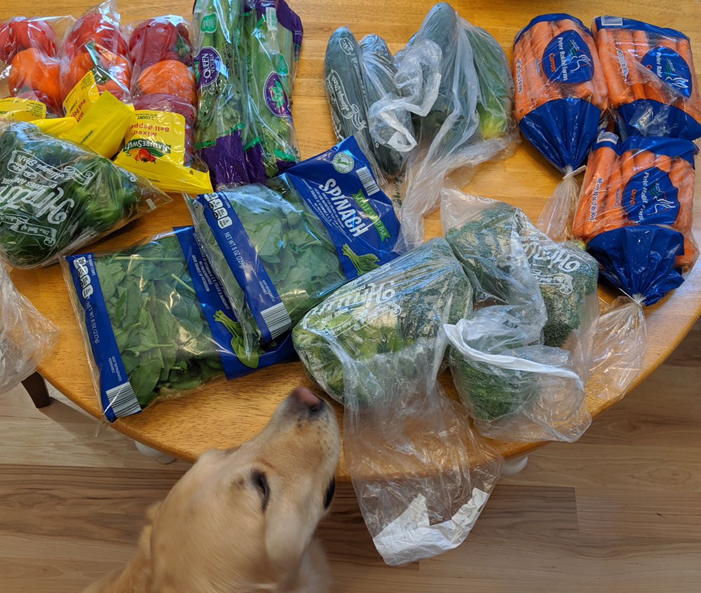 Meeko the Golden Retriever being the vegetable inspector and approving the produce.